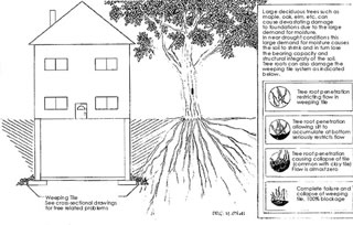 Diagram of work